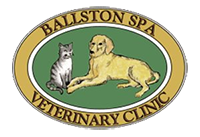 Ballston Spa Veterinary Clinic